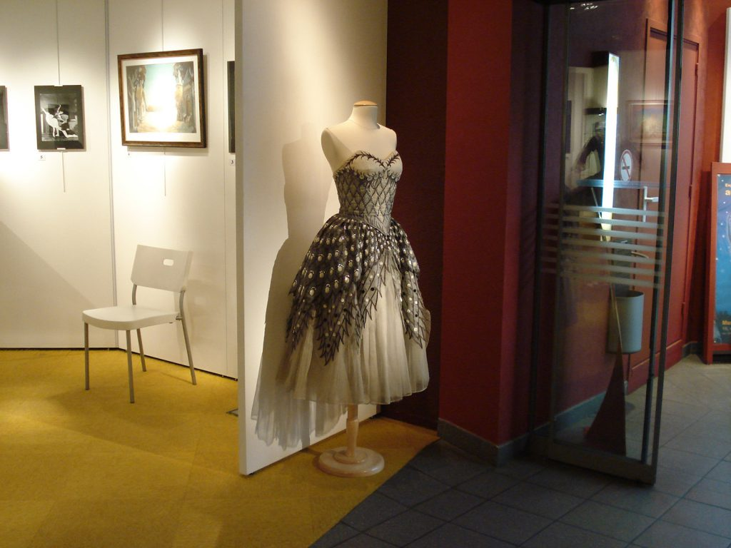 Exposition 2008 Pluie d'Étoiles - image 9