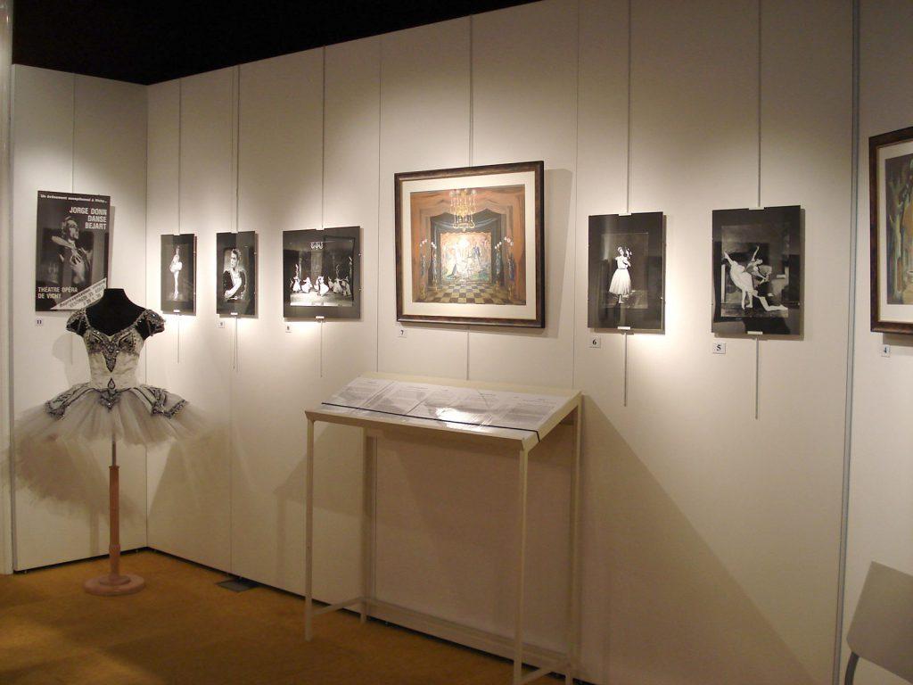 Exposition 2008 Pluie d'Étoiles - image 15
