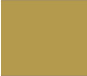 logo_opera_de_vichy